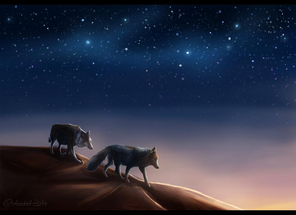Night travel by Alukei