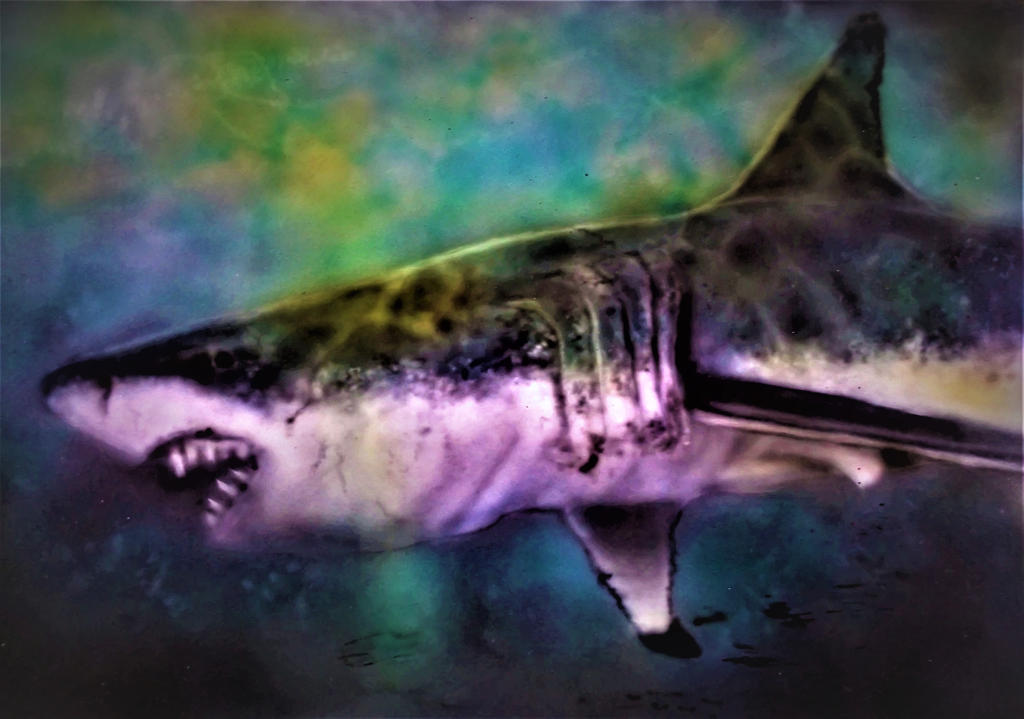 Great White airbrush on  A3 Dibond Panel (3) by Duttch