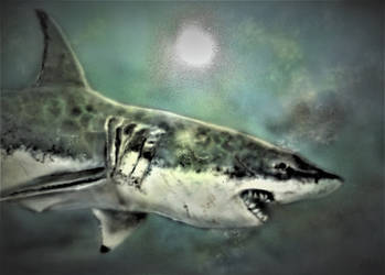 Great White airbrush on  A3 Dibond Panel (2) by Duttch