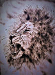 Pyro` Lion Sketch  (1) by dutchartt
