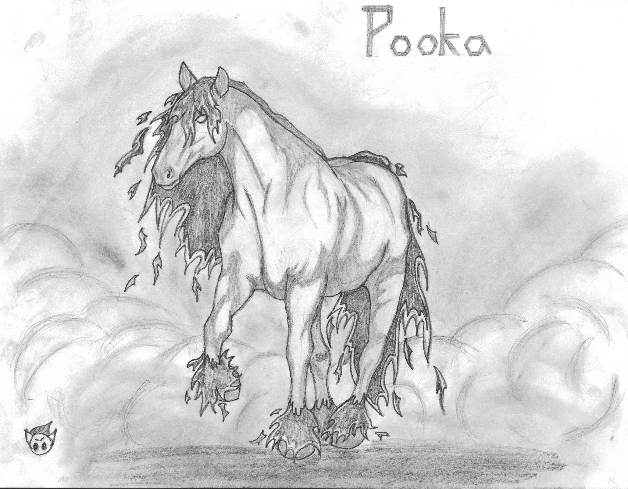 Resultado de imagen de phooka caballo