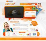 Phone company web site