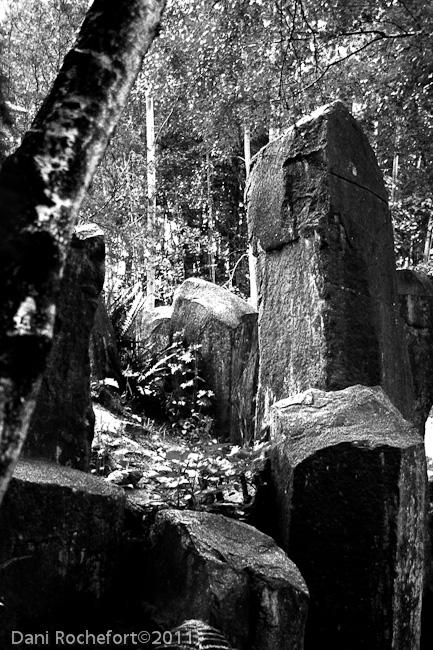 on the rocks by steelrose13