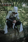 Assassins Creed - Take the leap