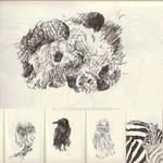 Animals sketch 2