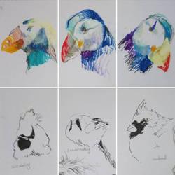 Animal Sketches by marakiO