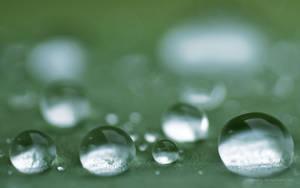 Wet Silver by peehs