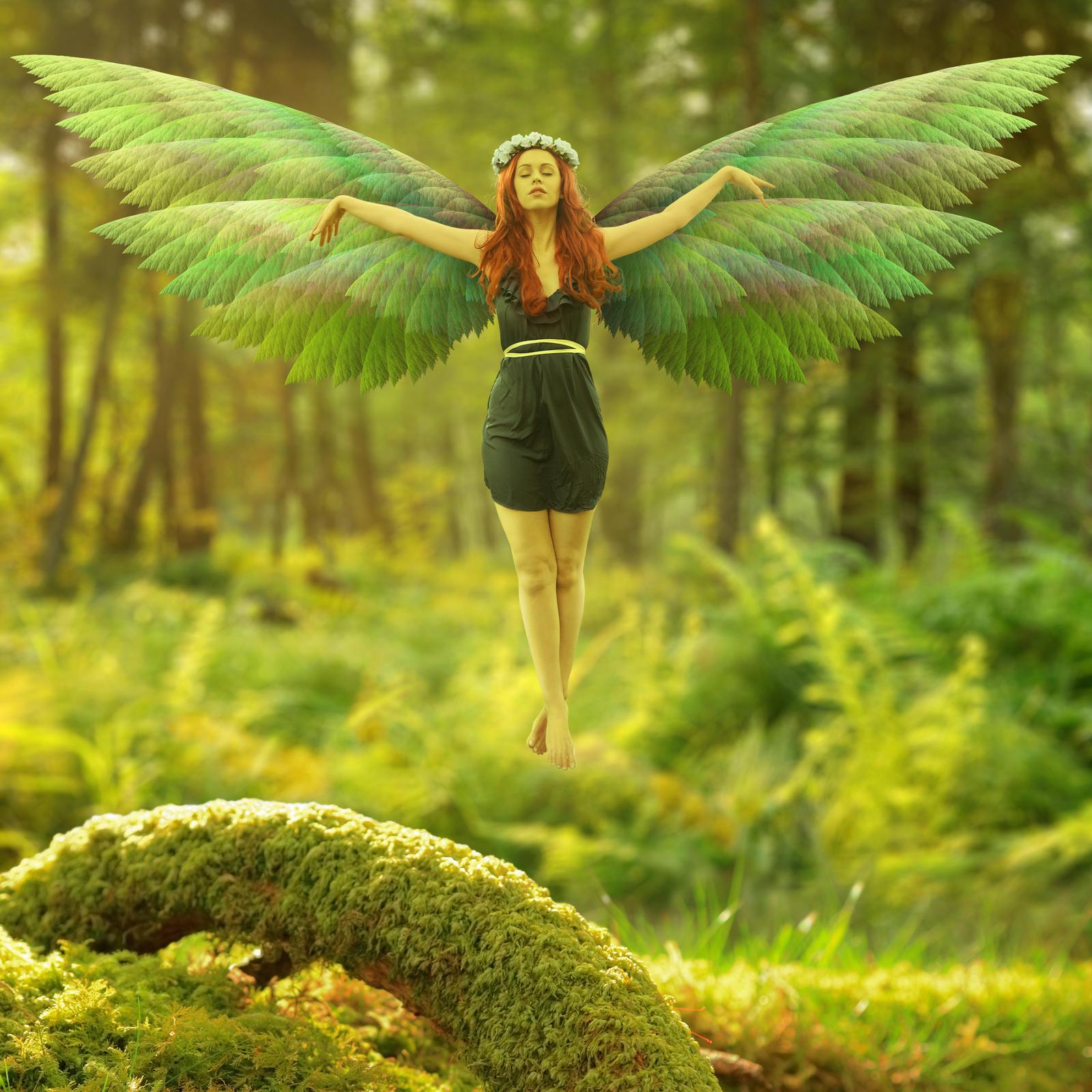 Fairies Favourites By Ellyevans679 On Deviantart