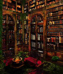 Lost library by pankreas67