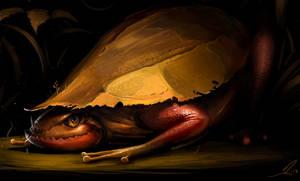Malaysian raptorfrog