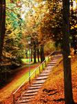 Italian Autumn by TaliNatPhotography