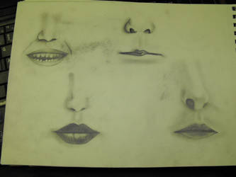 Nose and Mouth Study by missykrissy96