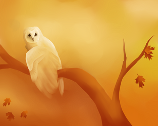 Dis is an Owl :) by CaittWolf