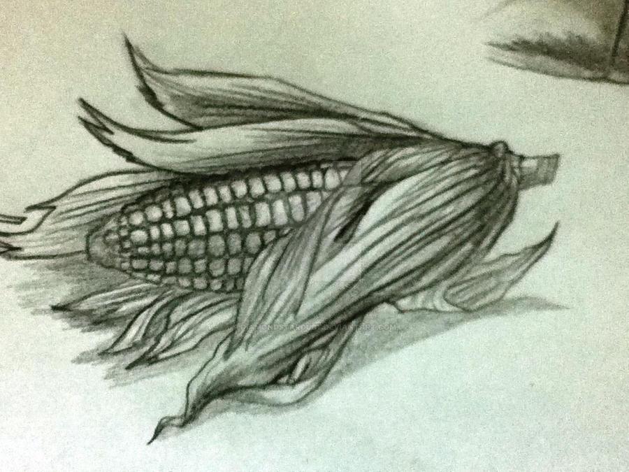 A Corn Realistic Sketch by DiamondStarDust on DeviantArt