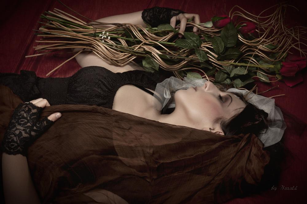 Sleep well, beauty... by HaraldW