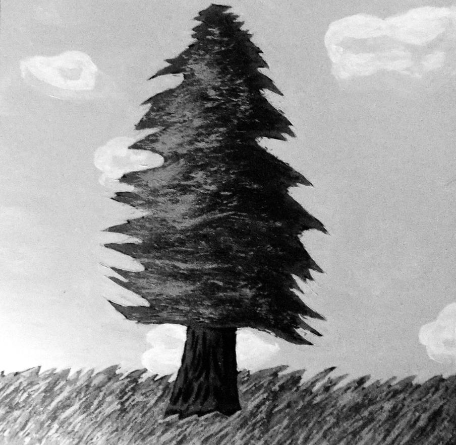 Black and White Pine Tree by TigerLillyKitty on DeviantArt