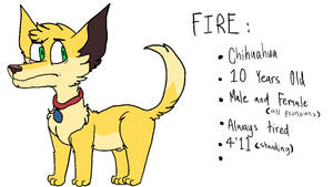 Fire Reference 2017