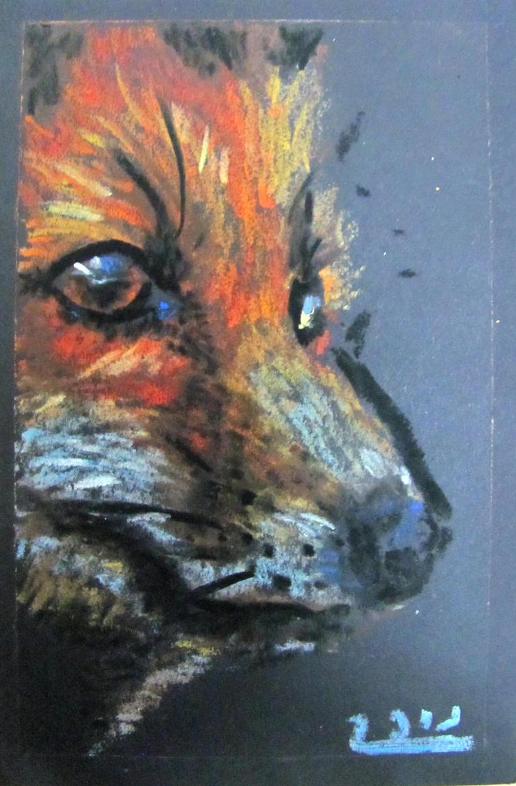fox by nupharHALL