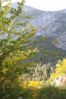 Yosemite Stock 5 by DeathlyRain