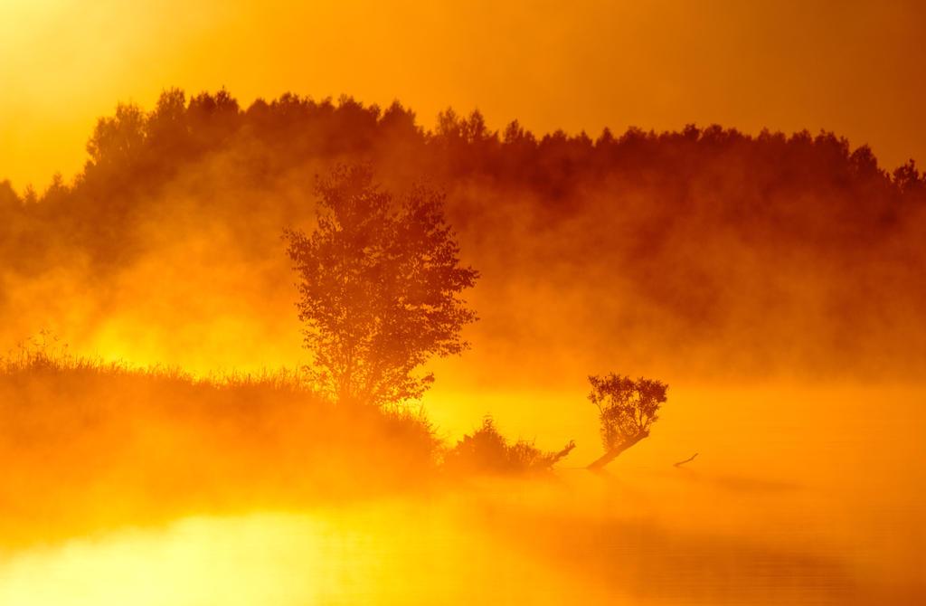 Golden Sunrise by DeingeL