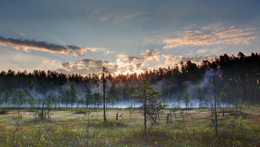 Dawn on Lamba by DeingeL