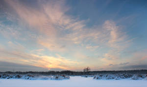 Beauty of Winter Sunrise