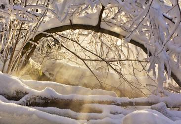 Window to the Dream World by DeingeL