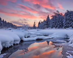 Winter Remembrance