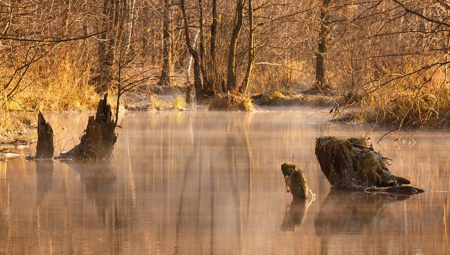 Mystery Waters by DeingeL