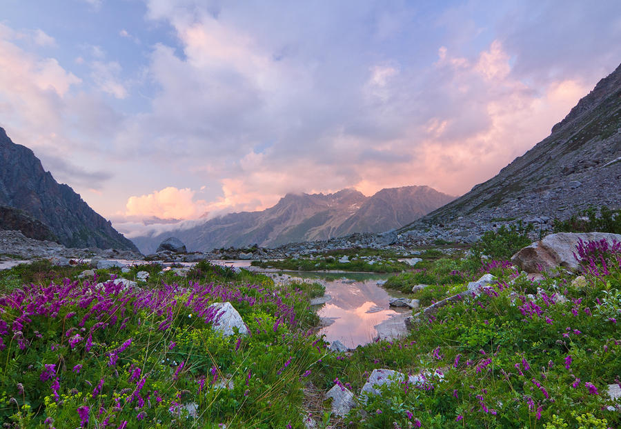 Blossoming Valley by DeingeL