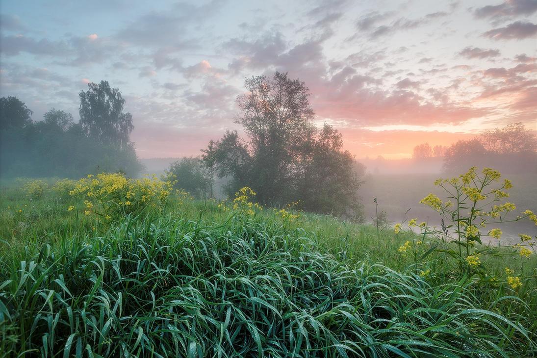 Sunrise by DeingeL