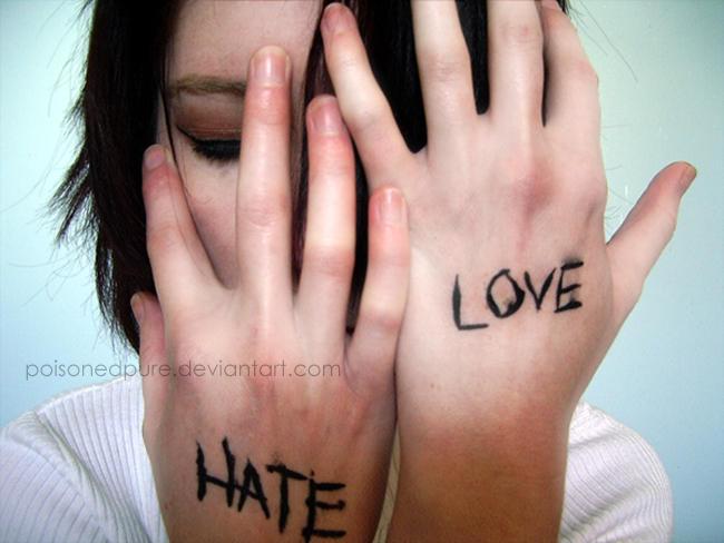 http://fc01.deviantart.com/fs9/i/2006/049/6/7/Hate_Love_by_PoisonedPure.jpg