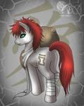 Gaara pony XP
