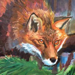 Fox by floreteine