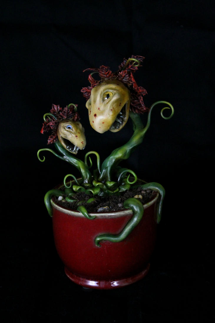Carnivorous Plants by RavendarkCreations