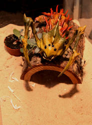 Pet Spiked Lurker Beetle