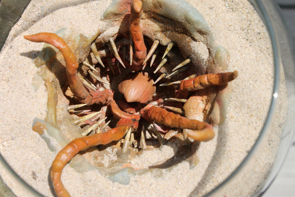 Baby Sarlacc Pit Monster 1 by RavendarkCreations