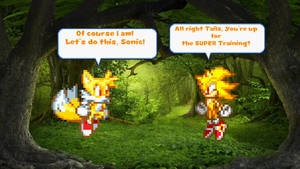 Sonic and Tails: Super Buddy Battle! (Request)