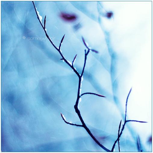 Birth Of Winter by Hantenshi