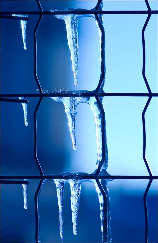 Freezy Days by Hantenshi