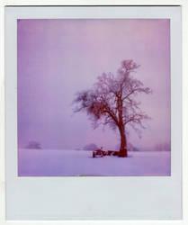 Winterland by Hantenshi