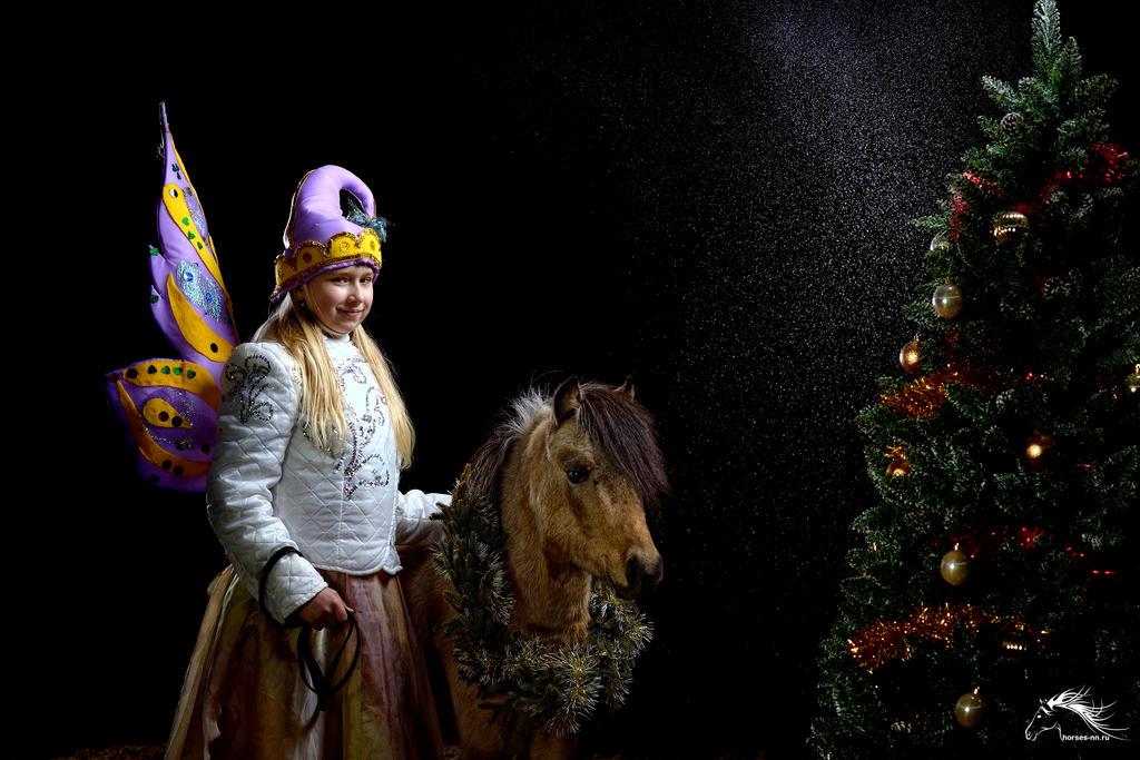 New Year - mini-horse and fairy - 2017 by rivkin-nn