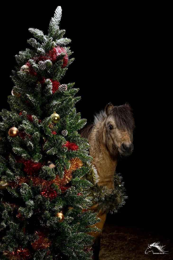 New Year - mini-horse - 2017 by rivkin-nn