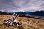 Lagoon Saddle - Arthurs Pass