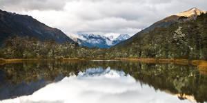 New Zealand's Beauty