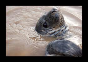 Splish-splash, I was... by Klors