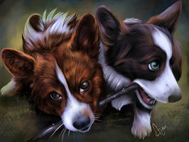 Toby and Skye -Cardigan Corgis by Mythicalpalette