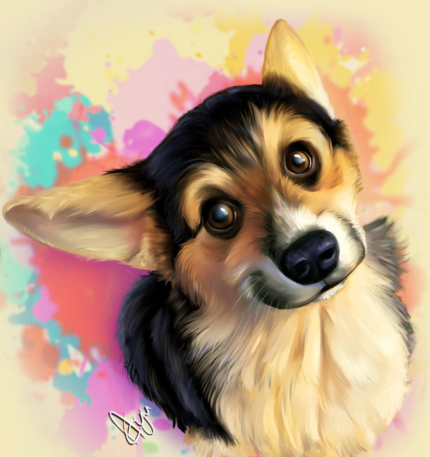 Phoebe the corgi puppy by Mythicalpalette
