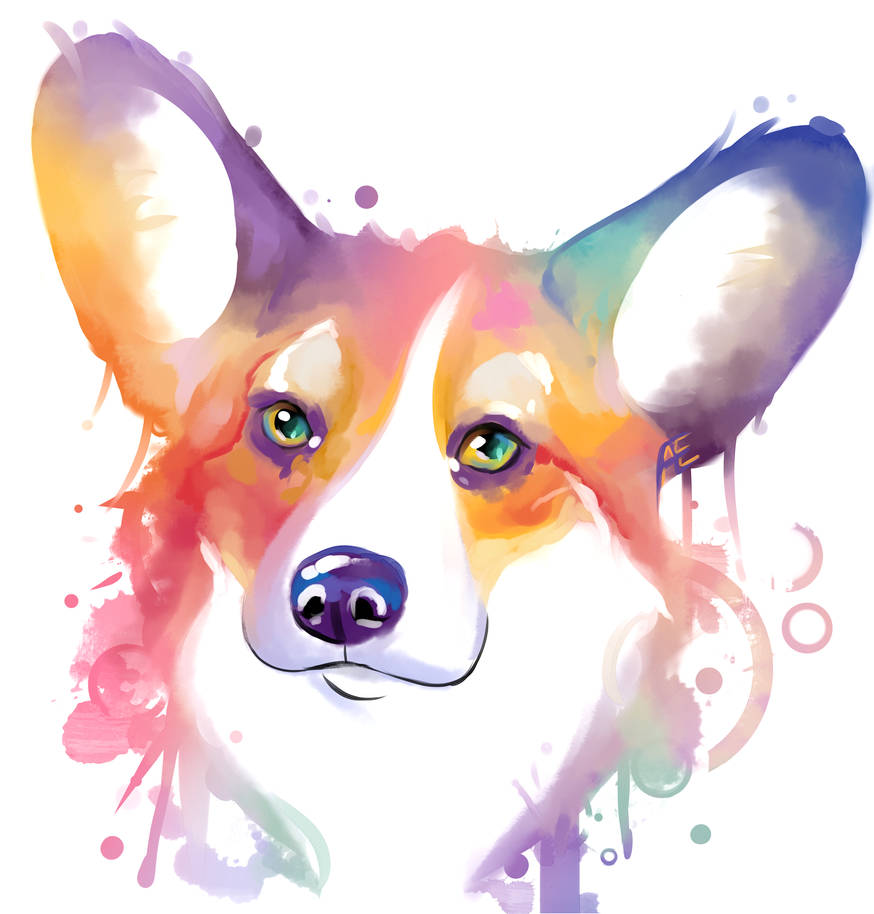 Rainbow series - Corgi by Mythicalpalette