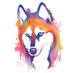 Rainbow Husky